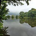 May Ann Stewardson – Poynton Pool view